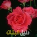 جهينة من أبو ظبي أرقام بنات للزواج