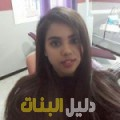 يمنى من ولاد تارس أرقام بنات للزواج